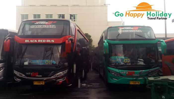 Sewa bus pariwisata di Situbondo terbaru murah